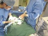 経験豊富な歯科医師によるインプラント手術